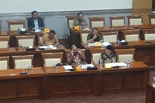 Komisi I Minta Menlu Cegah Internasionalisasi Isu Papua