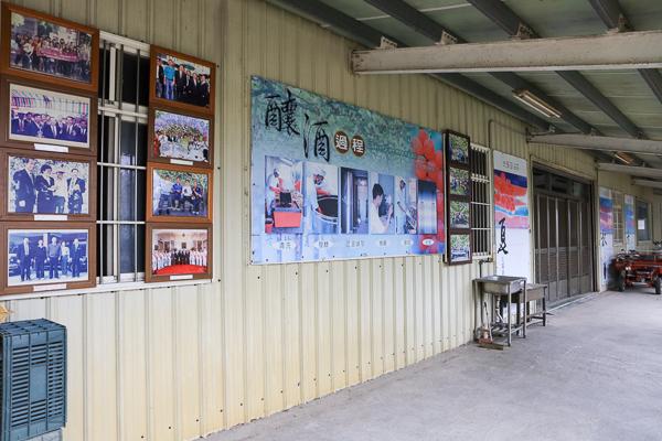 彰化埔心路葡萄隧道農場(酒莊)穿梭葡萄隧道拍美照,免費參觀