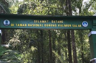 Hutan Halimun Salak Terangker