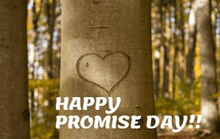 Promise Day Image