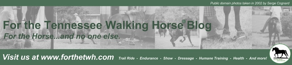 For the Tennessee Walking Horse
