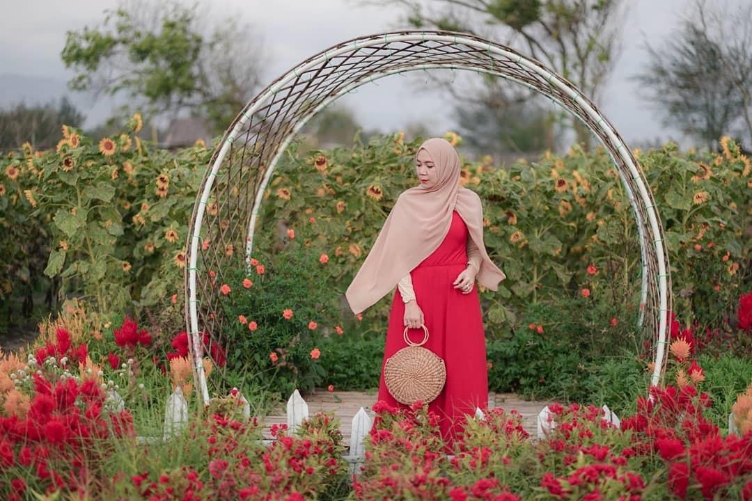 Lokasi Taman Bunga Romantic Garden Bantul