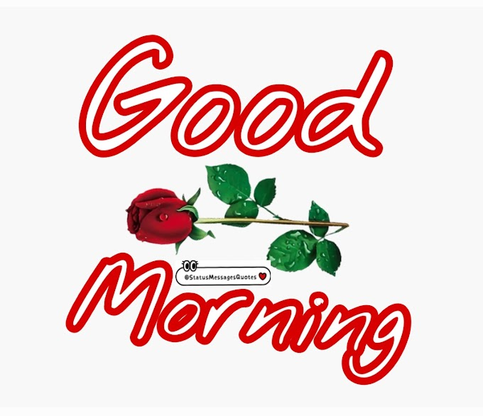 Best Good Morning Status for Love, Friends and Family