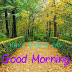 Top 10 Good Morning My Dear  Images greeting Pictures,Photos for Whatsapp