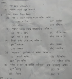 MP Board Paper Class 10th Last Year Question Papers In hindi