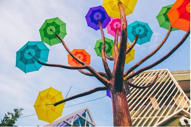 卡里善之樹