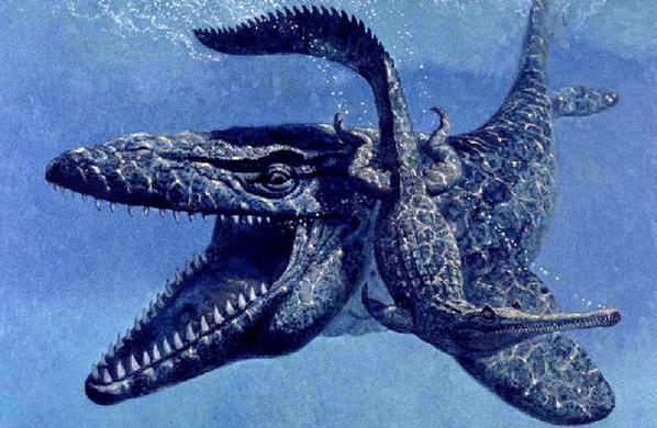 Mosasaurus. Sumber : listverse.wpengine.netdna-cdn.com