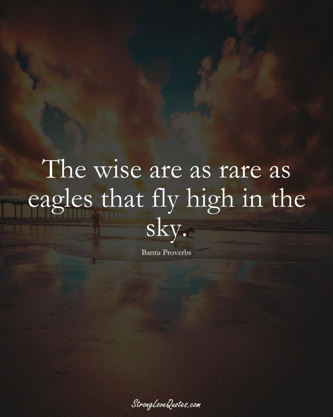 The wise are as rare as eagles that fly high in the sky. (Bantu Sayings);  #aVarietyofCulturesSayings