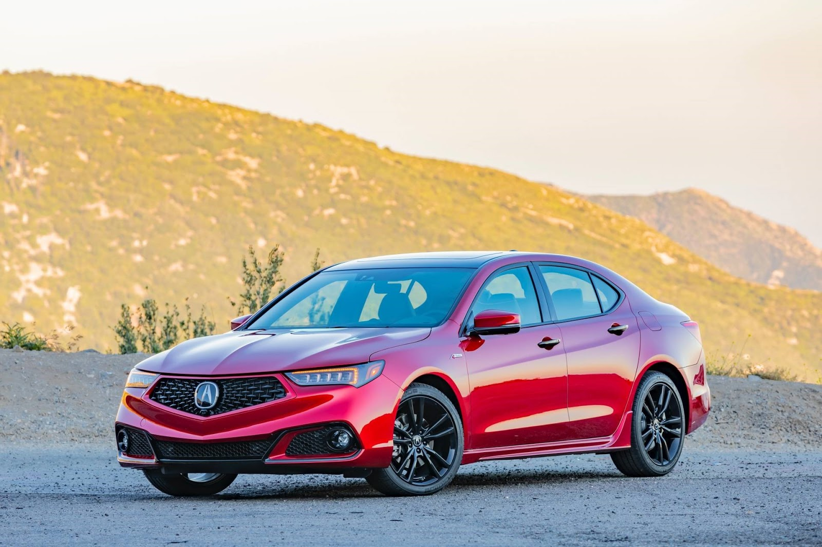 2020 Acura Tlx Pmc Edition Ms Blog