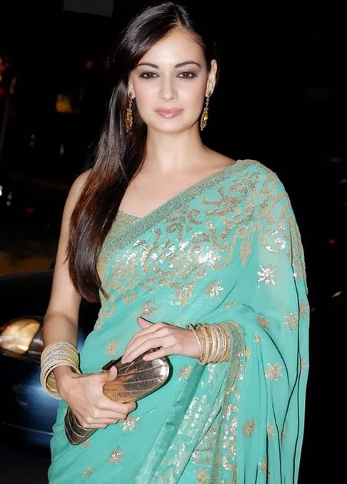 HD Diya Mirza in amazing saree