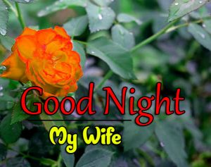 Beautiful Good Night 4k Images For Whatsapp Download 100