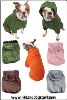 Super Cute Dog Shirts and Sweaters.