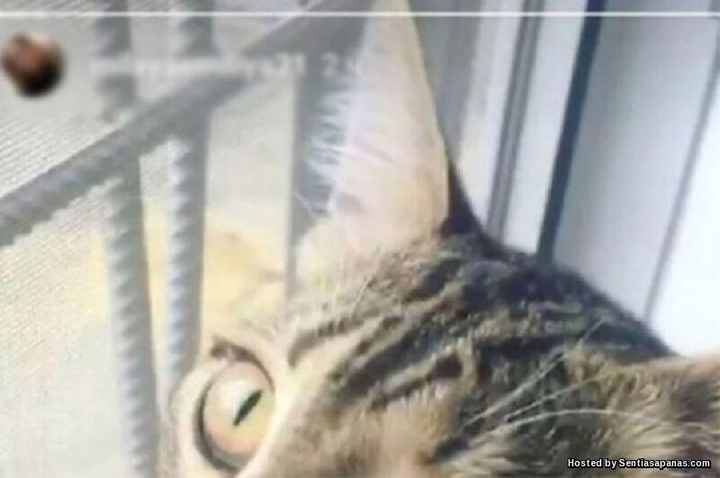 Pensyarah Kantoi Curang Selepas 'Skandal' Kongsi Gambar Di Instagram