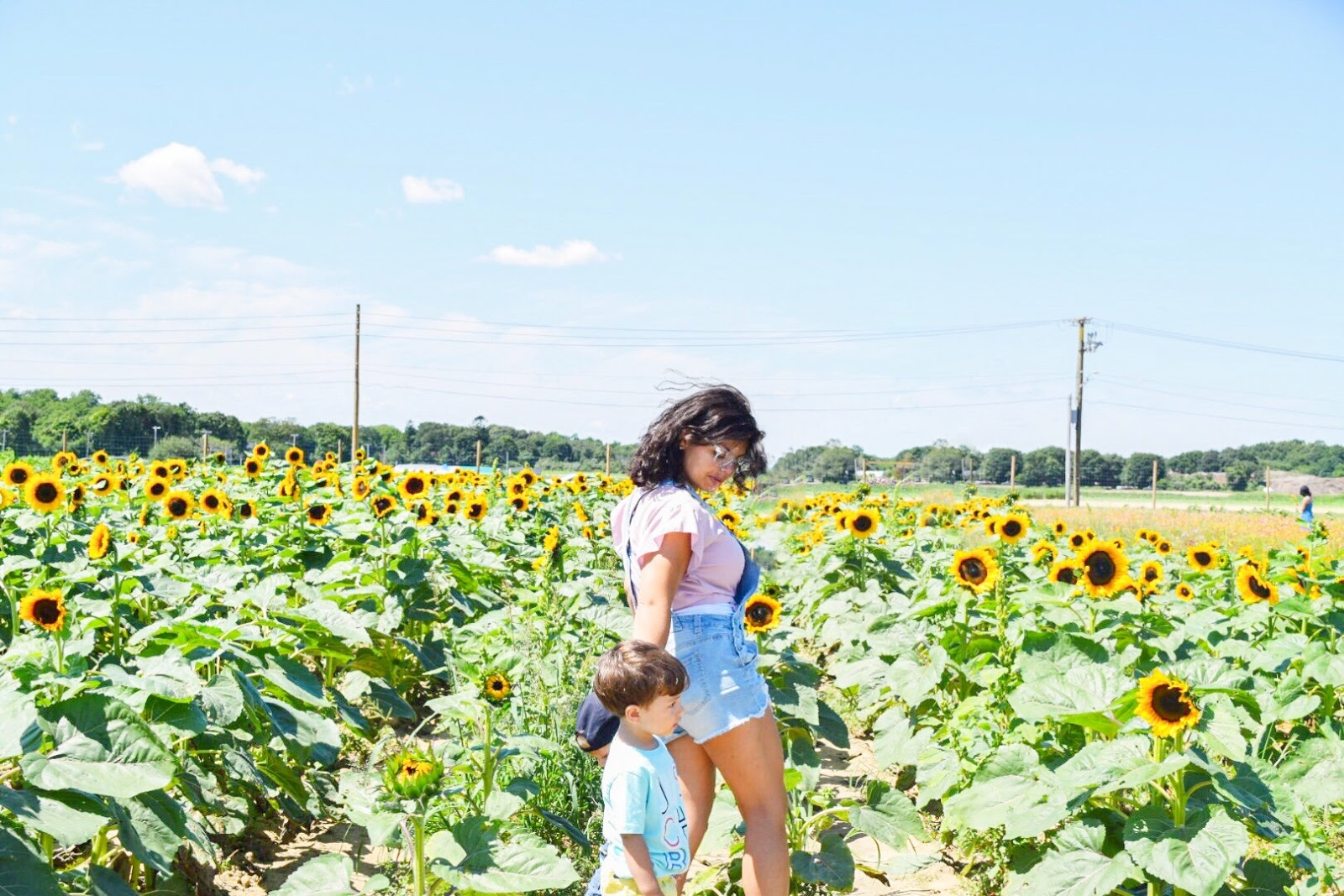 sunflowers, son, sons, mommy and me, photo session, family photos, summer 2019, summer, sunflowers near me, summer flowers, mommy blogger, best mom blog, best mom blogs