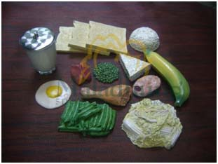 food model 4 sehat 5 sempurna
