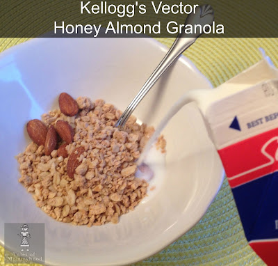 Kellogg's, vector, granola, fuel your summer,