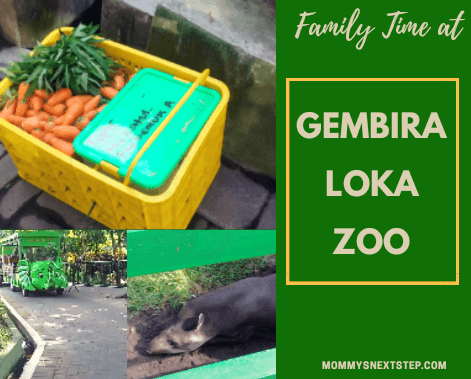 Family Time at Gembira Loka Zoo Jogja