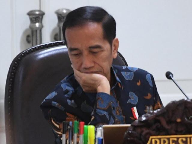 Jokowi: Bangun Pelabuhan Tetapi Tak Ada Jalan ke Sana, Buat Apa?