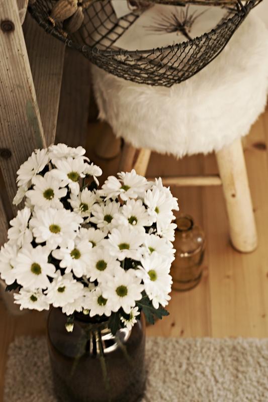 Blog + Fotografie by it's me! - weiße Chrysanthemen in brauner Glasvase mit Fellhocker im Hintergrund