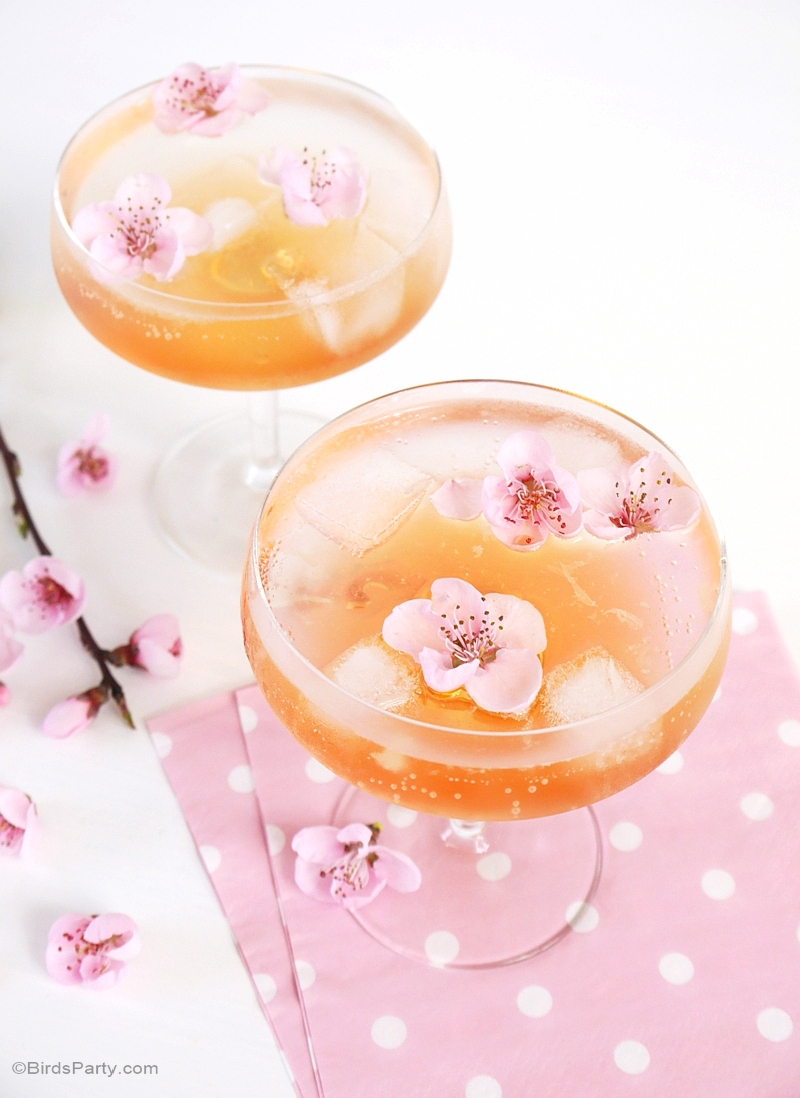Spring Blossom Cocktail Recipe