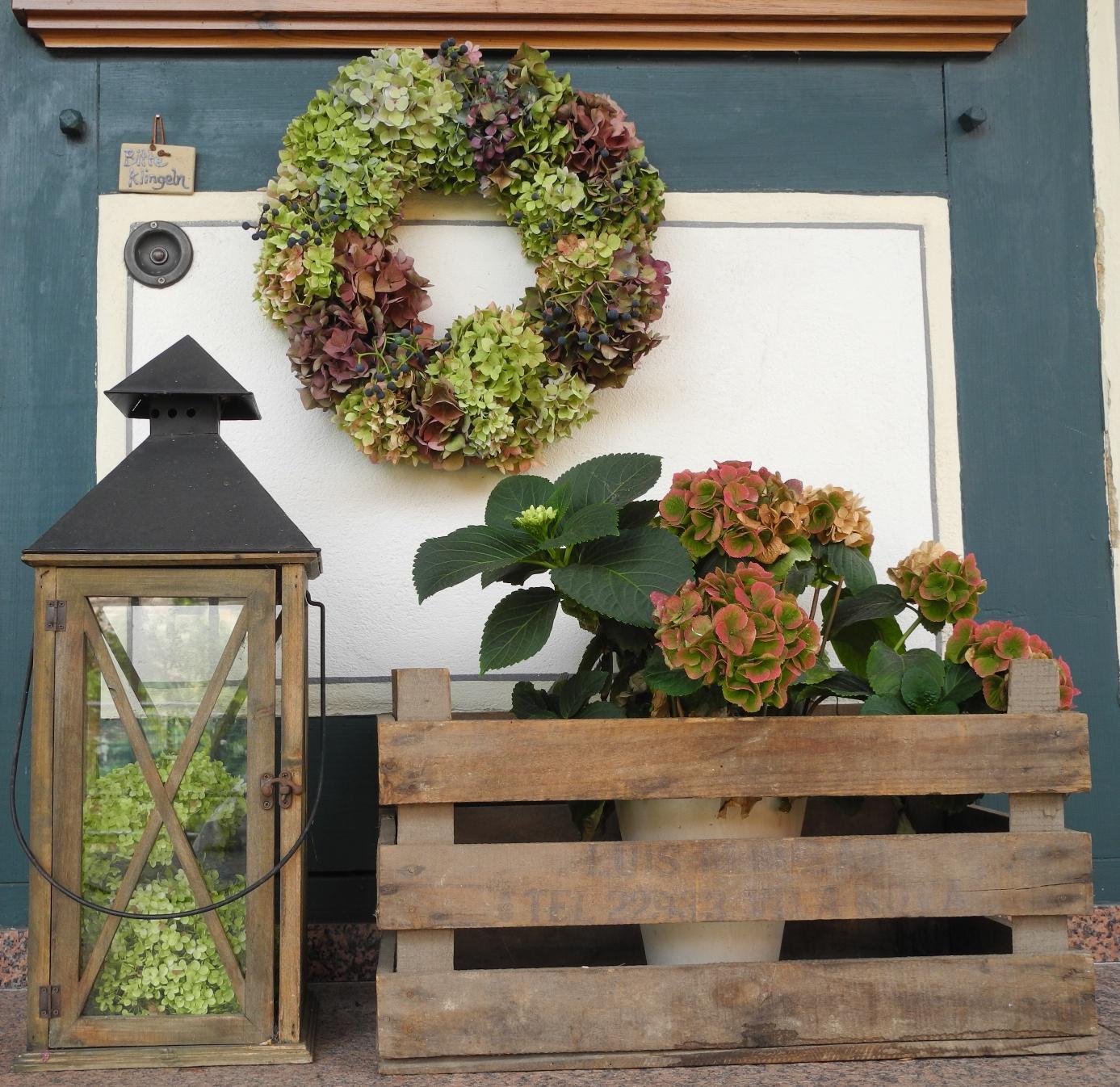 schmiedegarten hortensienbl tenbunt. Black Bedroom Furniture Sets. Home Design Ideas