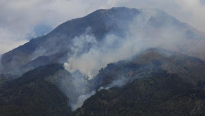 Kebakaran di Gunung Sumbing Meluas