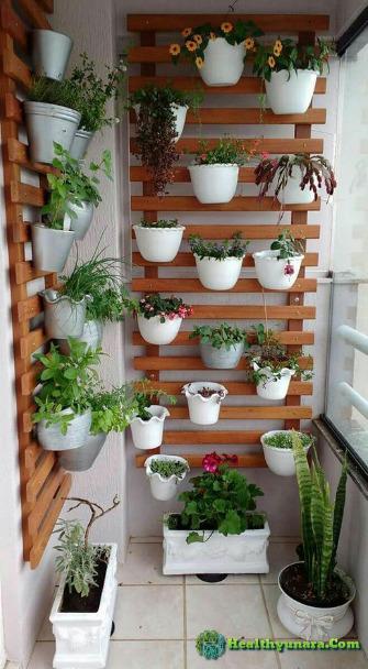 5 Creative Garden Vertical ideas to beautify your home look
