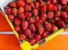 9 فوائد للفراولة  للبشرة