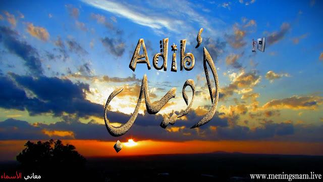 معنى اسم اديب وصفات حامل هذا الاسم Adib