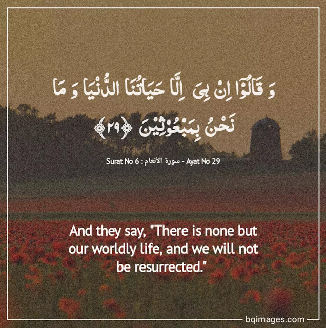 quran quotes on life