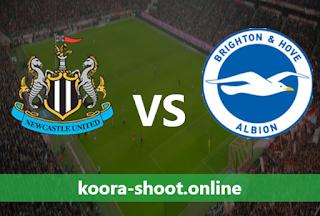 بث مباشر مباراة برايتون ونيوكاسل يونايتد اليوم بتاريخ 20/03/2021