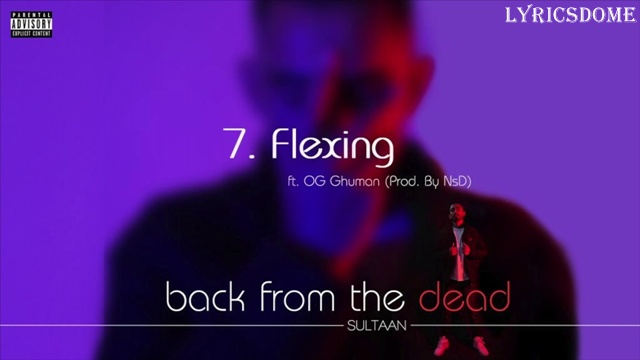Flexin' Lyrics - Sultaan