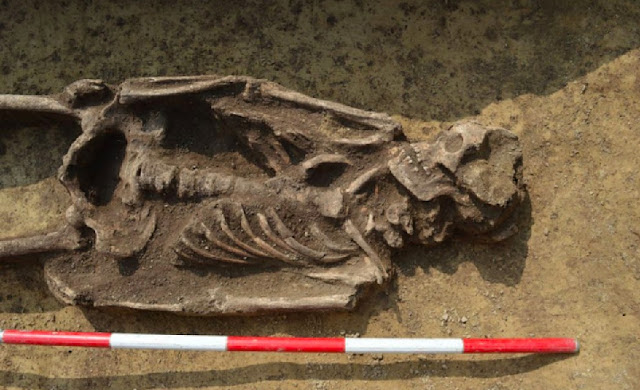 Graves from the Great Moravian era unearthed in Slovakia