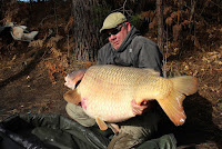 rainbow lake france common carp