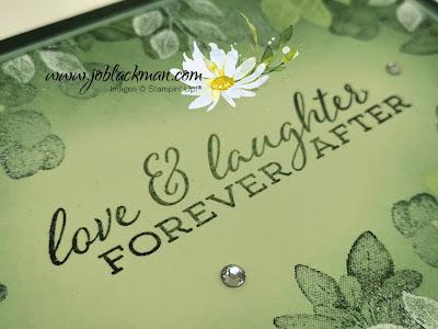 Forever Fern