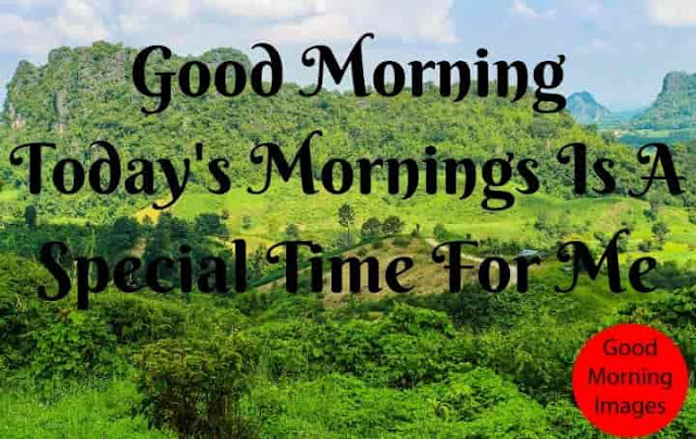 Special Morning Forever