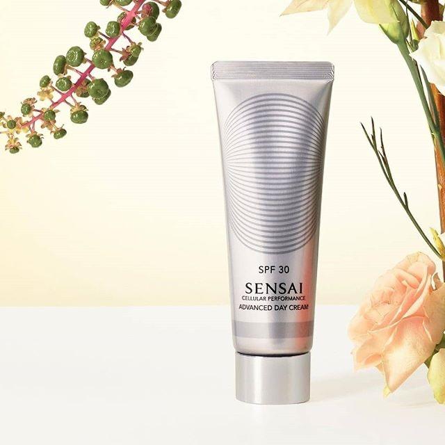 sensai-advanced_day_cream
