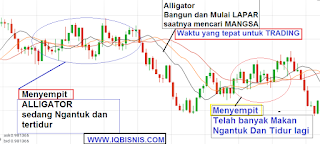 fx octa finex alpari metatrader 4 iq option binary