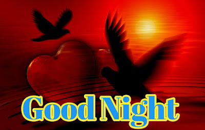 Romantic Good Night Images Photo Pics With Red Rose Romantic Good Night Images Photo Pictures Download Romantic Good Night Images Wallpaper With Quotes