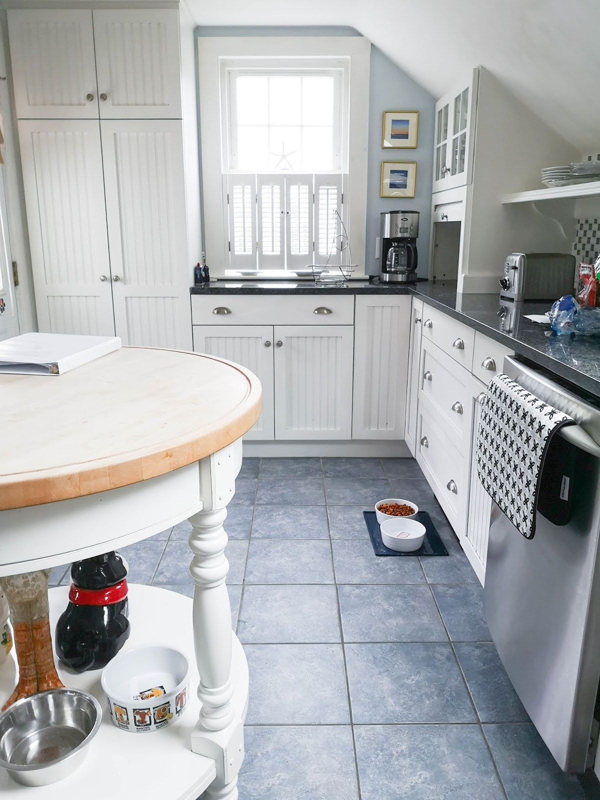 Our Dog Friendly Cape Cod Airbnb Rental