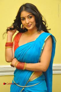 Telugu Actress Vaibhavi Stills in Blue Saree at Www.Meena Bazaar Movie Opening  0034.JPG