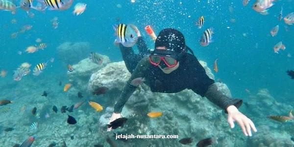 kegiatan wisata private trip pulau pari