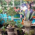 Ubah Kedai Abang Menjadi Kebun Si Abang , Ibu Esty