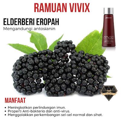 4 Ramuan Premium Vivix