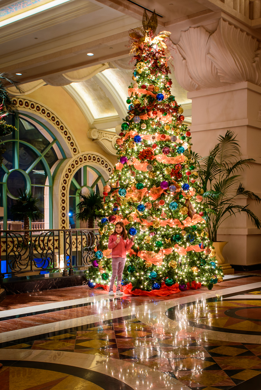 Christmas In Bahamas Christmas Decore