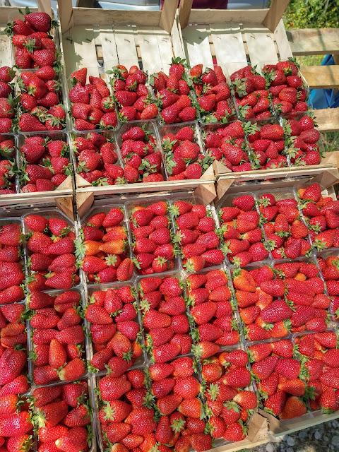 Albanian strawberries