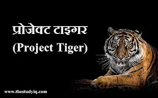 project tiger in hindi