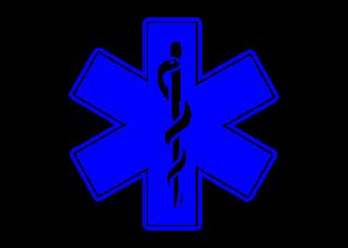 Estrella de la vida Logo Vector