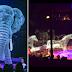 Mantap Jiwa! Inilah Circus Holograms Pertama Di Dunia!
