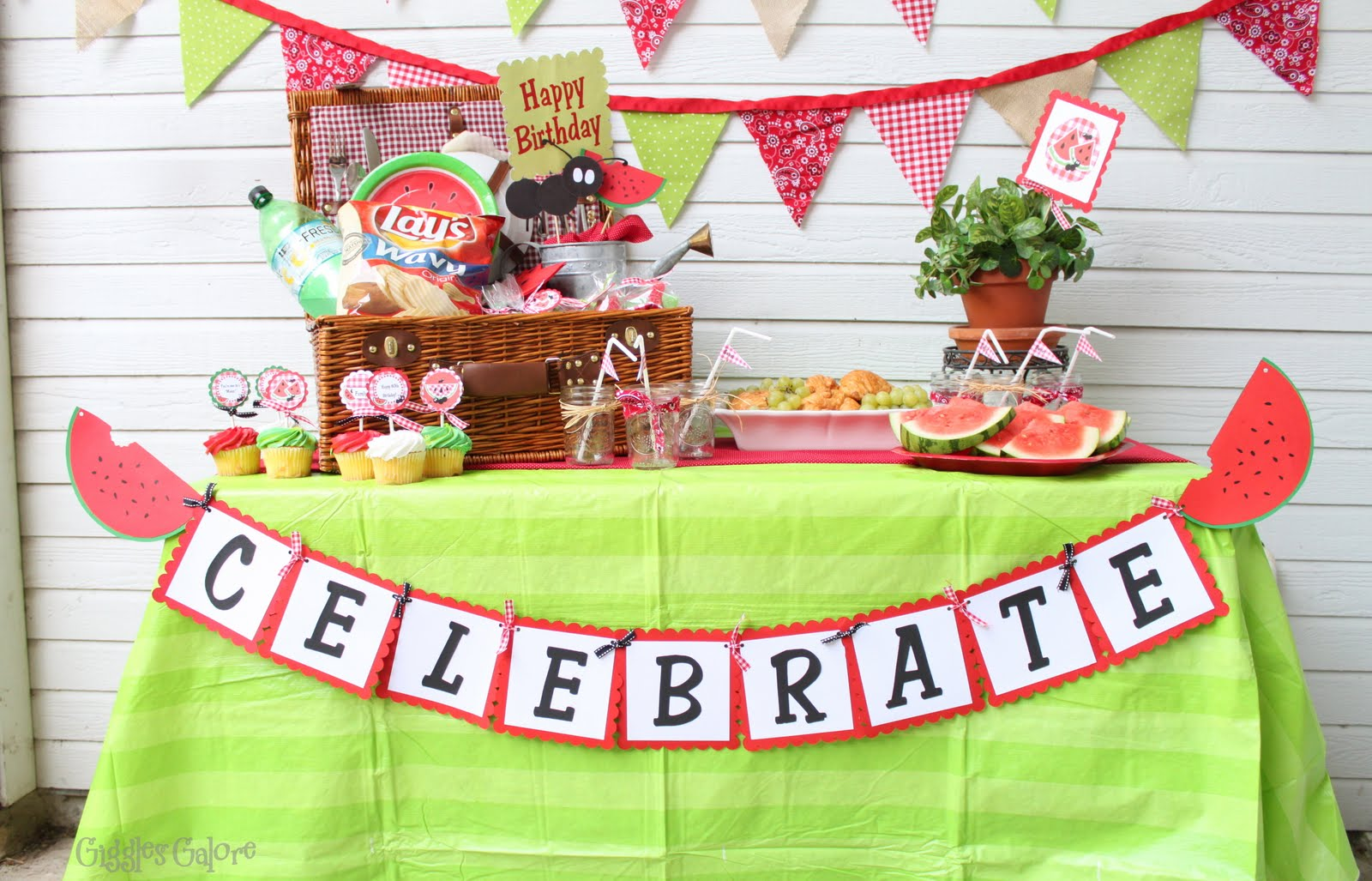 Picnic Themed Decorations Guest Post Watermelon Picnic Party Creative Juice